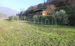 PALINI-IMMOBILIARE-VENDE-TERRENO-AGRICOLO-GUSSAGO-49000-18