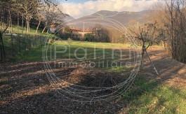 PALINI-IMMOBILIARE-VENDE-TERRENO-16000-1
