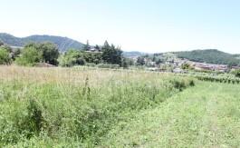 PALINI-IMMOBILIARE-VENDE-TERRENO-OME-20000-1